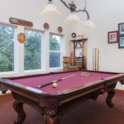 Olhausen 9 foot table with pingpong table top